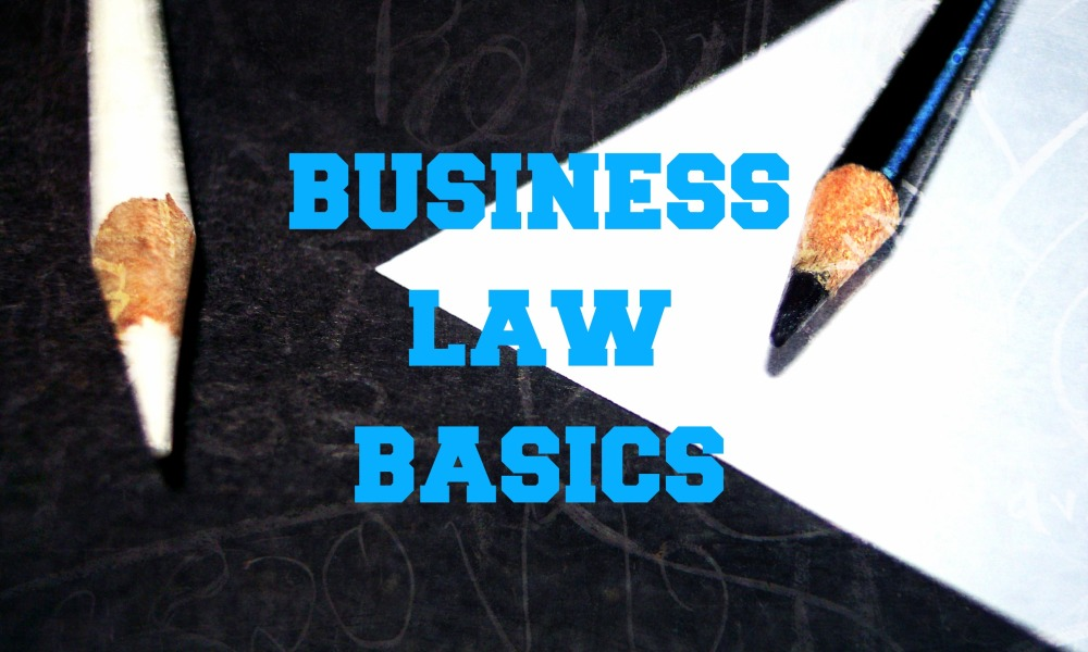 Business Law Basics: Are You Incorporating Your Business? Or Are You Doing Something Else?
